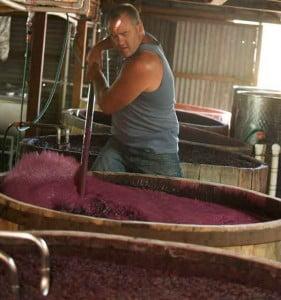Wine-Making-5